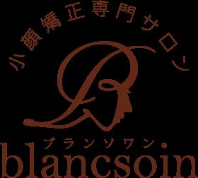 blancsoin-salon.com